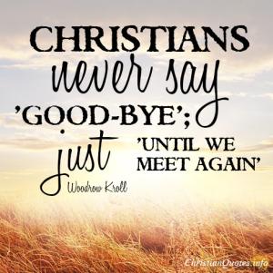 Good-bye, until we meet again